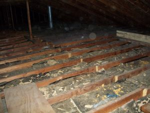Insulwise insulation uninsulated attic